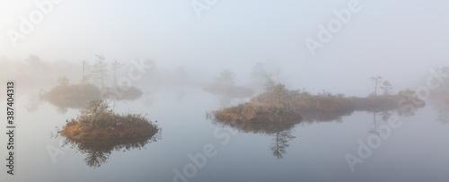 Valokuva misty morning in the swamp lake