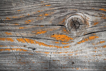 A Weathered Stripped Plank Texture Lit By Soft Light. Raw Wood, Wooden, Rustic, Backdrop, Background, Noone, Paste Space.