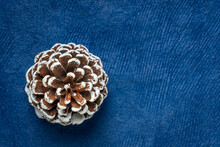 Frosty Decorative Pine Cone Ag...