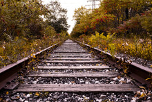 Autumn Train Track At The Don ...