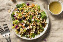 Healthy Organic Asian Salad