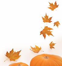 Leaves Falling Halloween Pumpk...
