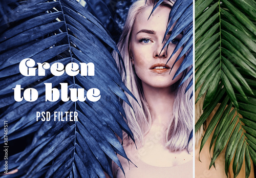 Obraz Green to Blue Photo Effect - fototapety do salonu