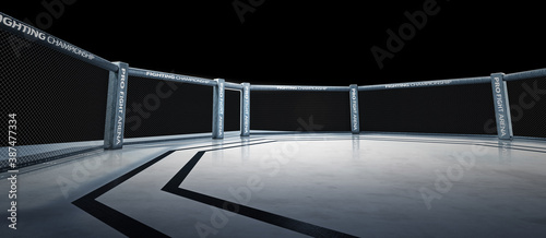 Canvas-taulu Fighting Championship