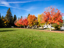 Autumn Colors Of Drake Park In Bend, Oregon.