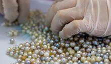 Making Of Pearl Jewelry Necklace Vietnam, Handmade