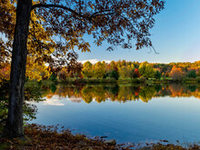 Keystone Lake In West Moreland County In The Laurel Highlands Of Pennsylvania  In The Fall With The Trees Reflecting In The Water And A Large Tree In The Foreground.  Colorful Tree Line.