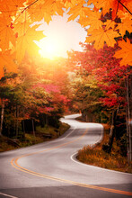 Sunny Autumn Winding Road In The Forest. Soft Selective Focus.