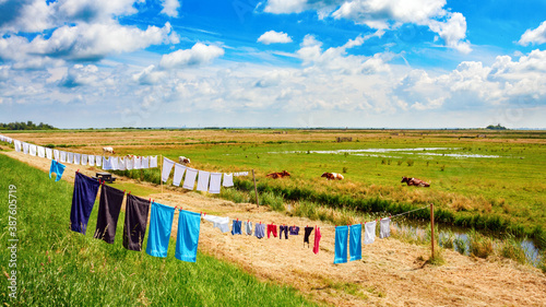 Canvas Print Typical dutch flat polder landscape with laundry on a clothsline drying in the sun under a blue sky with clouds