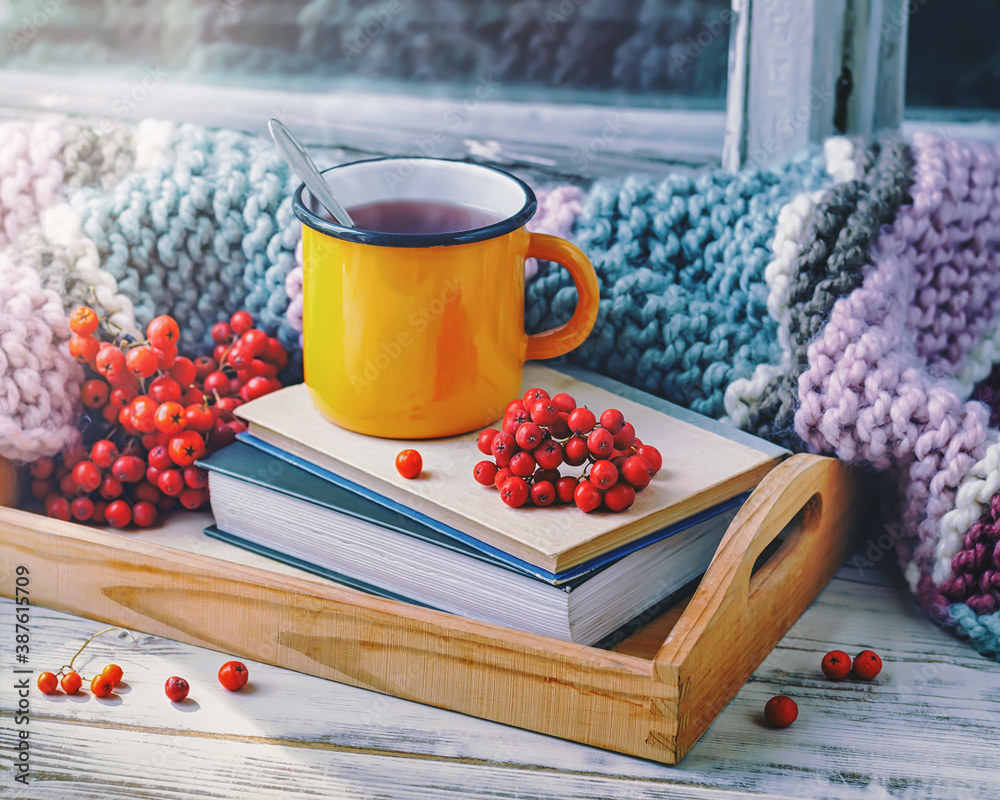Fototapeta The cup of hot drink, rowan berries and the knitted blanket on the wooden windowsill, toned.