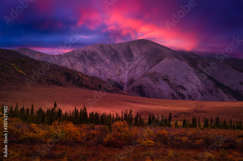 Obraz Beautiful View of Scenic Landscape on a Fall Season in Canadian Nature. Colorful Twilight Sky Artistic Render. Taken in Tombstone Territorial Park, Yukon, Canada. - fototapety do salonu