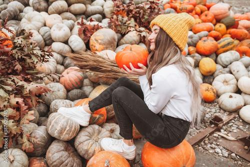 Cuadros en Lienzo pumpkins and gourds
