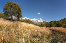 Autumn Landscape In The Mounta...
