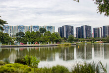 Singapore 23rd Oct 2020: The Lake View In Jurong Lake Gardens. A New National Gardens In The Heartlands, Where Spaces Will Be Landscaped And Created For Families. MRT Track In The Background.