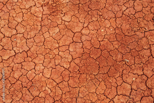 Nature background of cracked dry lands Canvas
