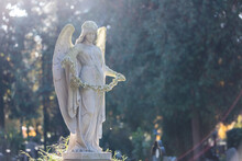 Statue Of The Angel In The Park