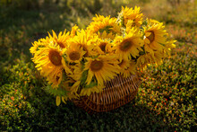Summer Basket With Sunflowers