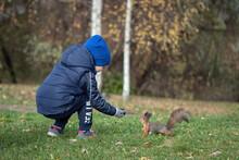 Little Boy Feeding Squirrel Fr...