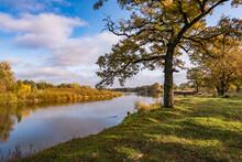 Beautiful Landscape In Oak Gro...