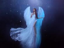 Fantasy Woman Angel Soars In T...