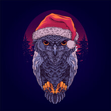 Owl In The Santa Claus Hat Wit...