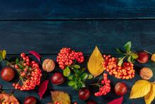 Autumn Background Design Templ...