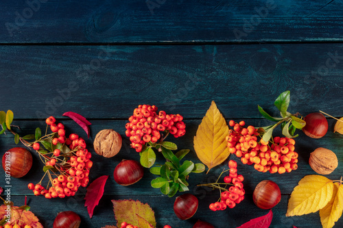 Fototapeta Autumn background design template with a place for text