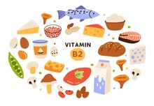 Collection Of Vitamin B2 Sources. Food Containing Riboflavin. Cottage Cheese, Mushrooms, Fish, Dairy Products, Nuts. Dietetic Products, Organic Nutrition. Flat Vector Cartoon Illustration