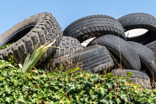 Tiresloading Pile Of Used Tire...