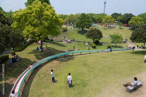 Fototapeta 新緑の百花台公園