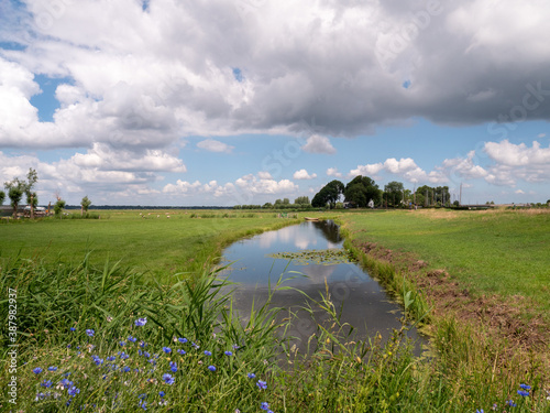 Fotografija Natural river at the polder of Eemnes in the Netherlands
