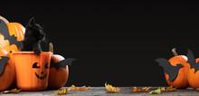 Writeable Halloween Consept. A...