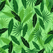 Leaves In Jungle Background. Tropical Green Plants With Exotic Shapes Summer In Hawaii With Thickets Of Plants And Lianas Fern Forests In Misty Haze Rain And Vector Vapor.