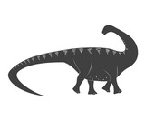 Fototapeta Dinusie - Little apatosaurus cartoon baby. Jurassic period dinosaur icon isolated on white, apatosaurus vector illustration