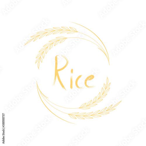 Fototapeta Rice logo design. Wheat symbol. obraz