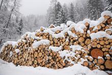 Tronchi Neve Pesagio Invernale...