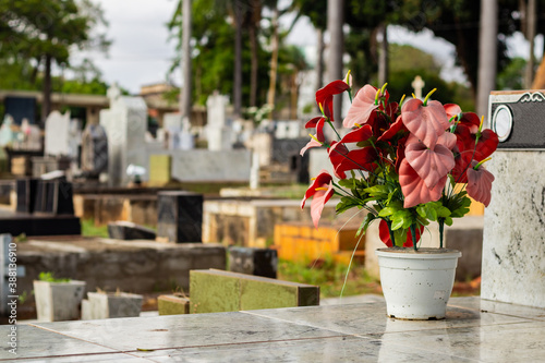 Cuadros en Lienzo Vaso de flores artificiais sobre um túmulo em cemitério.