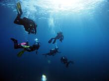 Scuba Diving Malta, Gozo And C...