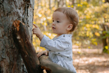 Little Boy Playing In The Woods