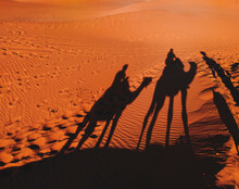 Shadows Of Two Tourists Riding Dromedaries In The Sahara Desert