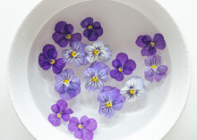Edible Violets Flowers Soaking In Water In Ceramic Bowl