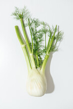 Fresh Whole Fennel Bulb On Whi...