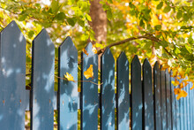 A Blue Wooden Picket Fence Wit...
