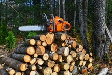 Chainsaw With Woodpile Of Cut ...