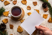 Looking At Blank Photo Card With  Black Tea Cup Against Pastel Background With Fall Leaves In Pine Branches And Pine Cones Natural Frame. Memories Of Past Concept. Copy Space