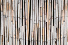 Old Bamboo Fence Held Together...