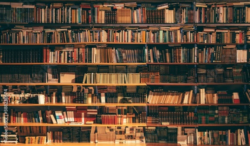 Canvas Print books in library