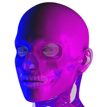 3d Rendering Illustraion Of Blule-pink Uper Skull