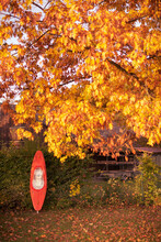 Red Canoe Standing Upright Leaned To A Fence On A Golden Sunny Day In October With Colorful Foliage Of Leaf Tree