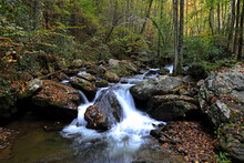 Smith Creek At The Base Of Anna Ruby Falls In The Chattahoochee National Forest In North Georgia In The Fall.
